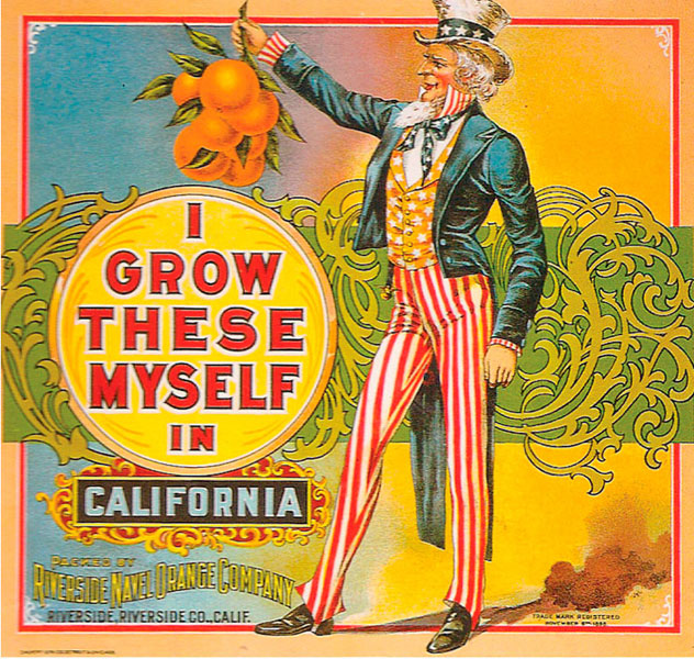 Uncle Sam loves citrus