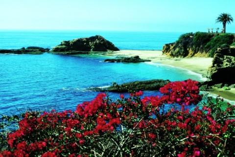 Coastline Image