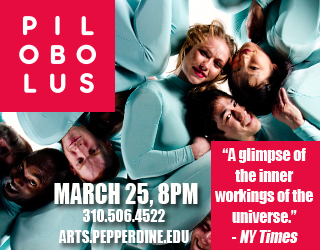 Pilobolus Arts-Meme-box