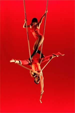 Ten Years Gone rope pas de deux